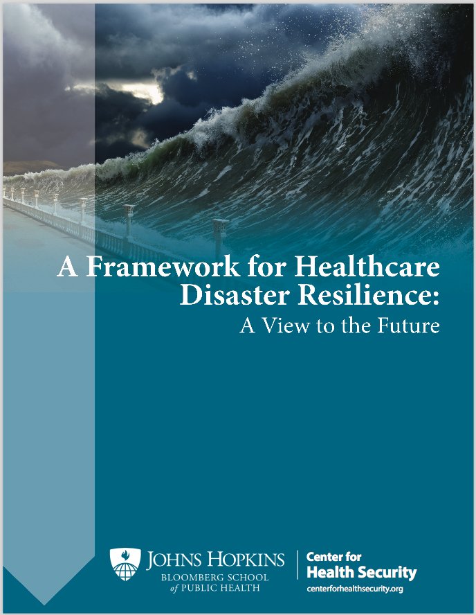 A Framework for Healthcare Disaster Resilience: A View to the Future