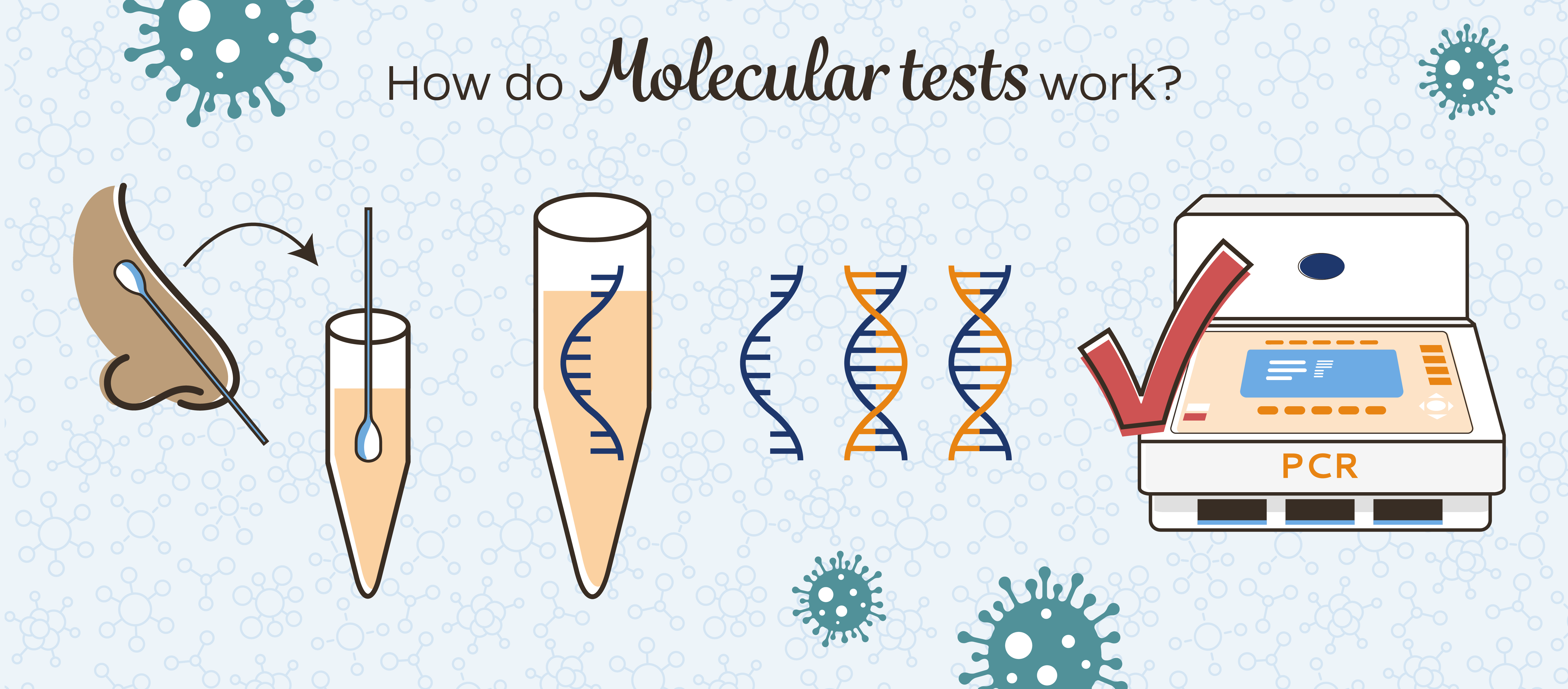 Types of COVID-19 tests: molecular